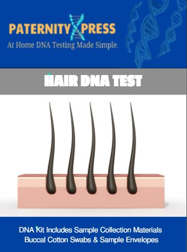 hair dna testing paternity express