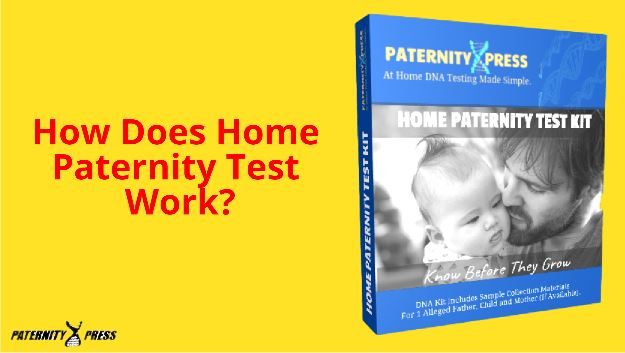 how does a home paternity test work